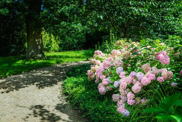 Comment bien préparer son jardin pour le printemps?