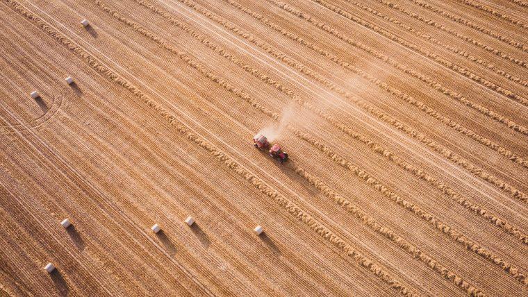 Comment augmenter la production agricole?